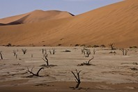 Namibia_Safari